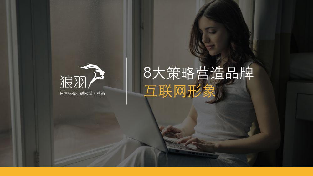 狼羽网络:8大策略营造品牌互联网形象