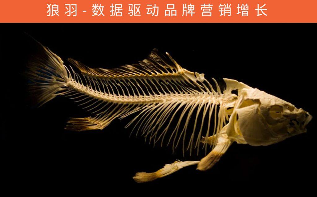 利用鱼骨分析法找到问题的根本原因的好处